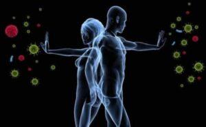 difesa del sistema immunitario