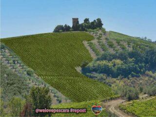 Penso che la nostra regione sia completa e non manchi di bellezze caratteristiche che magari associamo ad altri luoghi e invece sono in #Abruzzo. Ad esempio nella foto sembra di essere in un classico paesaggio toscano.... invece siamo in provincia a #pescara precisamente alla #torredesterlih a #spoltore Foto repost from unknow photographer ❤️ #welovesocial #welovepescara ❤️ Segui e tagga @welovepescara #weloveabruzzo #weloveitaly #weloveourfans ------------------------------------------ #pubblicitàsocial #pubblicitàsmart #lapubblicitànonèunoptional #ecommerceitalia #pubblicitàa360° la rete dei tuoi #negozipreferiti #newscover